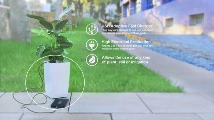 Bioo Lite, Charger Unik dengan Tenaga Fotosintesis Tumbuhan