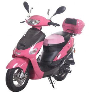 New 2014 49cc Moped Gas Scooter Street Legal Motor Bike Free SHIP Windshield | eBay