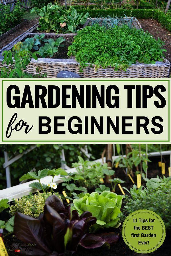 Flower Gardening Tips Pdf Gardening Tips For Rose Bushes Gardening