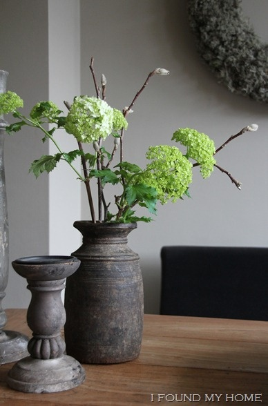 White hortensia with spring catkins