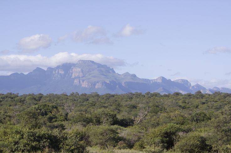 View Drakenbergen | Hoedspruit | South Africa