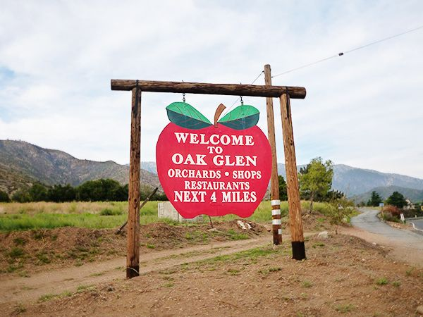 Apple Picking in Southern California's Apple Country | Excursions | Travel | KCET