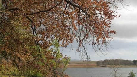 Autumn view across Malham Tarn
