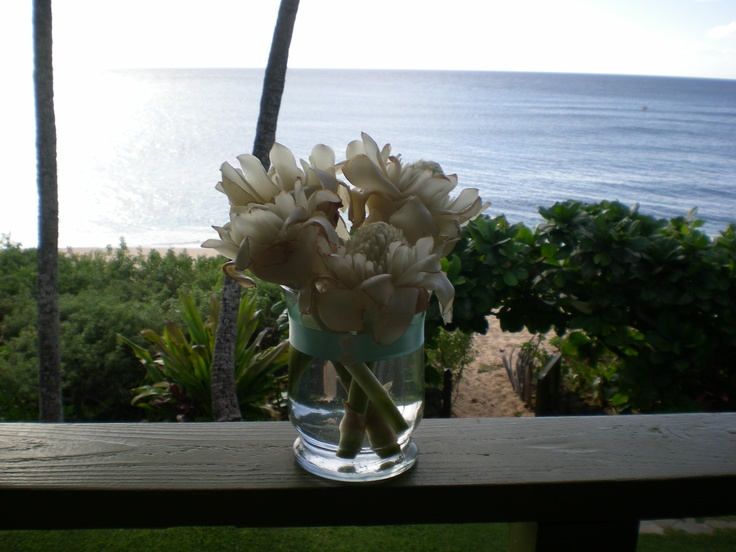 17 Best Beach Wedding Foods Images On Pinterest: 17 Best Images About DIY Beach Wedding Decorations On