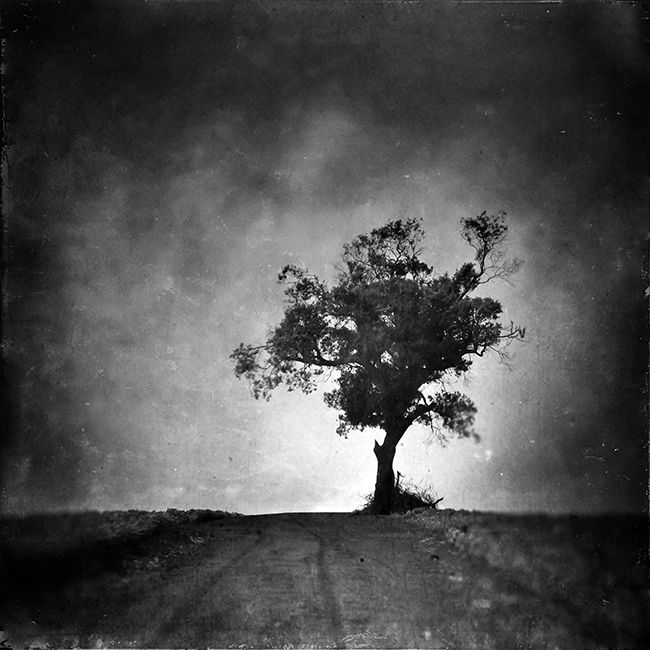 The Day And Then The Shade, photographie de Leda Siloto