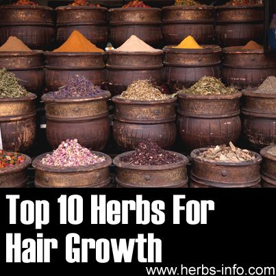 Top 10 Herbs For Hair Growth   http://www.herbs-info.com/herbs-for-hair-growth.html