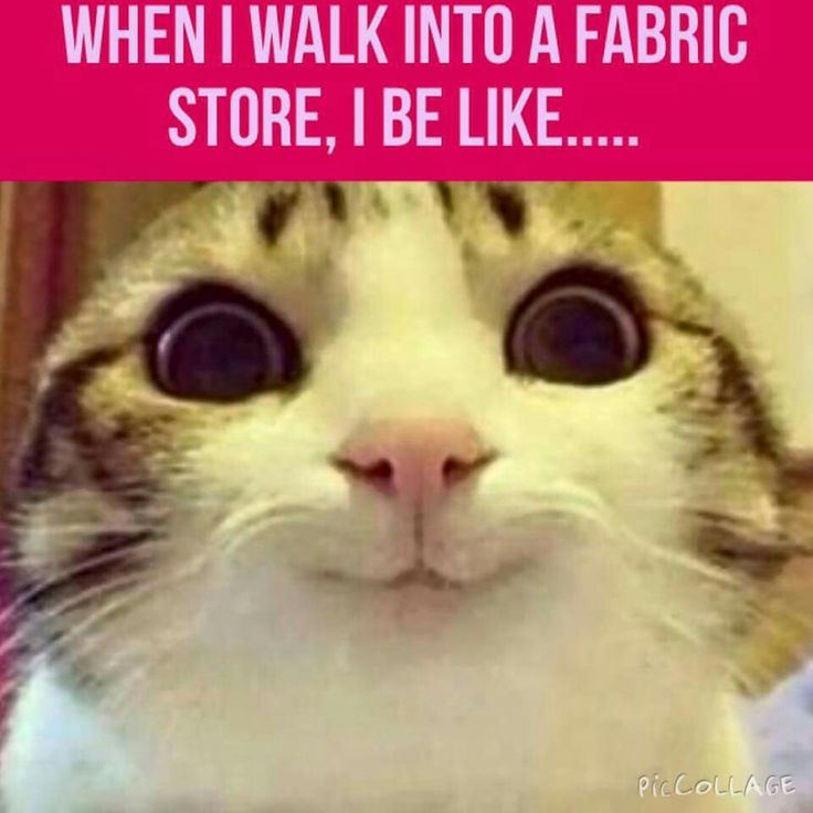25 Best Ideas About Sewing Humor On Pinterest  Sewing