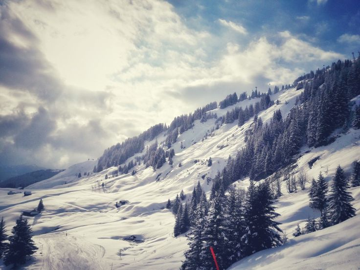 @Grindelwald-First #snow #ski #inlovewiththealps