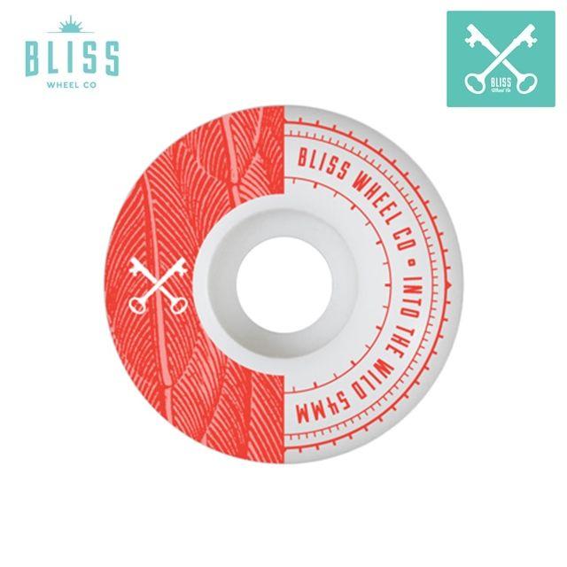 Bliss wheel TEAM WHEELS Into The Wild - 54mm