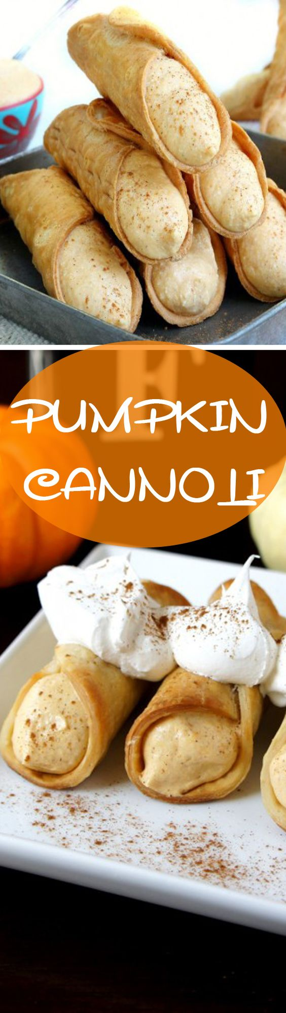 Pumpkin Cannoli recipe…. This summer I took a blogging break! Some of you have missed me, some of you did not even notice there was no email coming from me for weeks