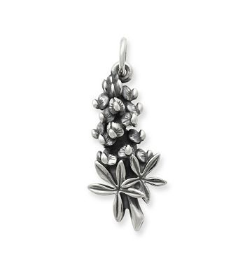 I've been waiting for a Bluebonnet charm from James Avery jewelry! HURRAH! (jamesavery.com)