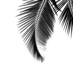 #nature#republic#naturerepublic#naturerepublicaloeveragel#naturerepublicmurah#nature_lovers#salatiga#ungaran#semarang#jawatengah#jawa#indonesia#jakarta#bandung#tangerang#cirebon#pekalongan#malang#surabaya#bali#lombok#papua#manado#banjarmasin#balikpapan#pontianak#jambi#padang#aceh#bangkabelitung#original#murah#murahmeriah#mahasiswa#sma#korea#koreanstyle#mask#alakorea#cosmetics#cosmeticskorea#naturalmakeup#alami#nobokis#shareinjar#shareinjarmurah