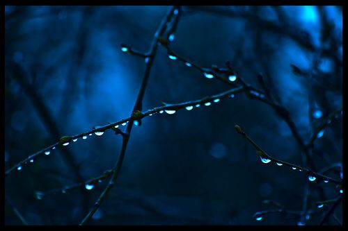 Drops in blue