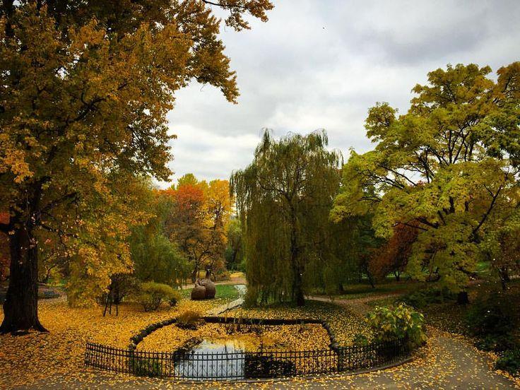 Autumn, is here, Oslo ❤️ (ved Botanisk hage (Oslo))