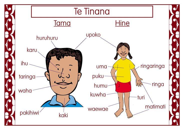 The Body Maori Chart | Te Reo Maori Resources