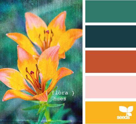 more flora hues