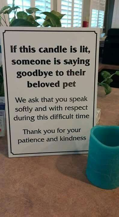 Found on the Good Pet and Vet Guide Facebook page, with their wish that all Veterinary practices would do this...such a good idea ♡.