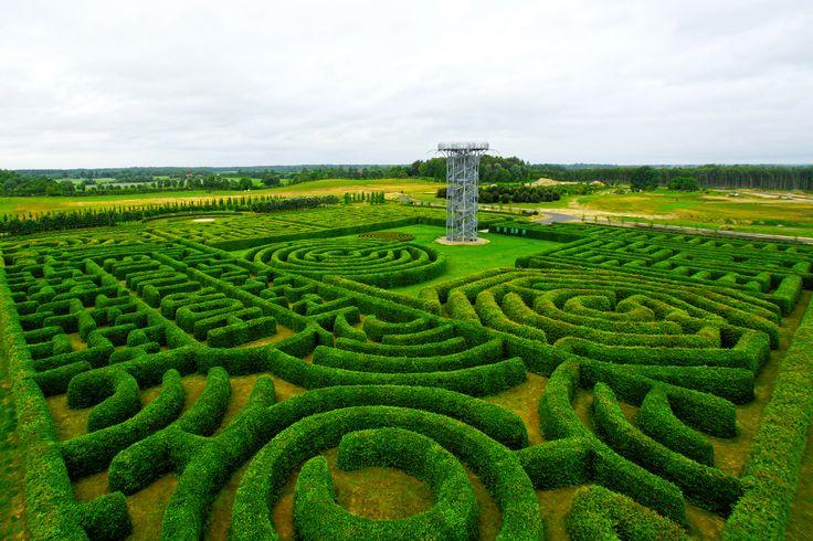 Największy na  świecie labirynt grabowy w Ogrodach Hortulus Spectabilis w Dobrzycy