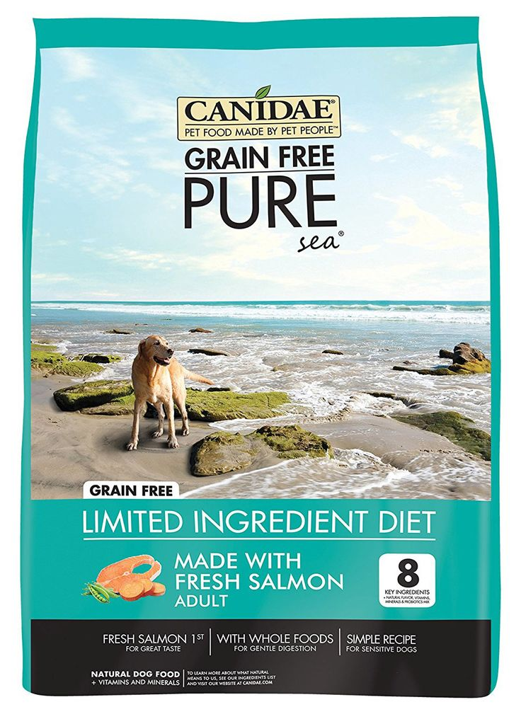 28 Best Dog Food For Sensitive Stomachs Images On