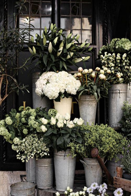 #flower #inspiration #bevonboch