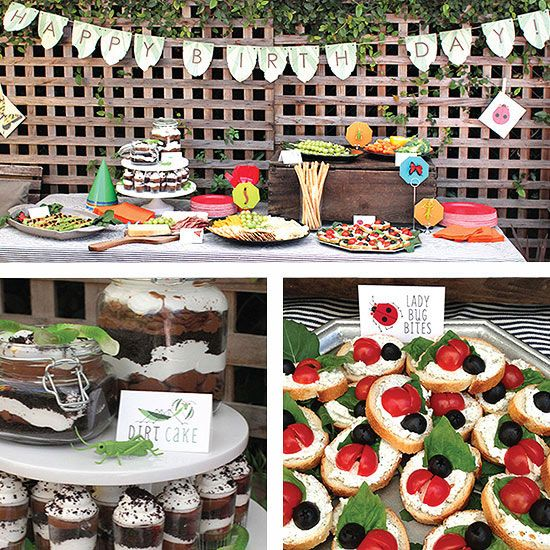 A bug-theme birthday bash with dirt cake and ladybug bites!