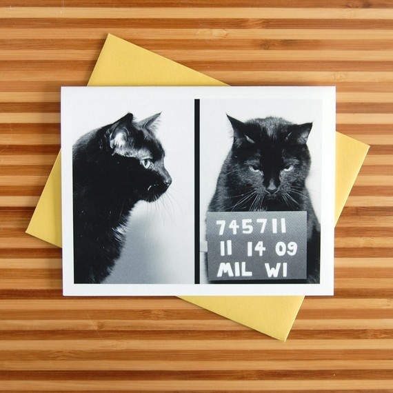 ha! AC's Mug Shot greeting cardChristmas Cards, Pets Portraits, Kitty Cat, Mugs Shots, Greeting Cards, Cat Mug, Shots Greeting, Xmas Cards, Black Cat