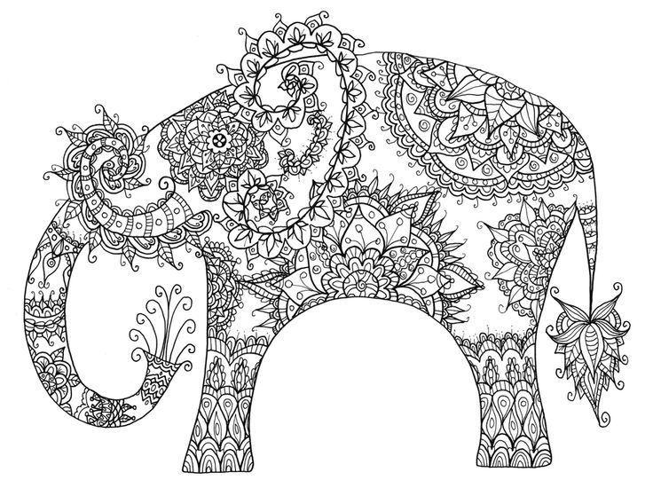 Magic Animal Coloring Book : Images about adult colouring elephants zentangles on