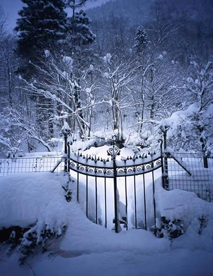 snowy eveningWinter Snow, Winter Scene, Dreams, Wrought Iron Gates, Snow Pictures, Winter Wonderland, Gardens Gates, Wintersnow