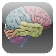 link to a free 3D brain app for iphone or ipad