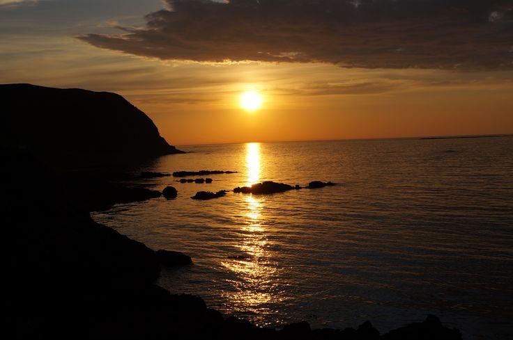 <3 Christineborg <3 Runde bird and treasure island # Norway