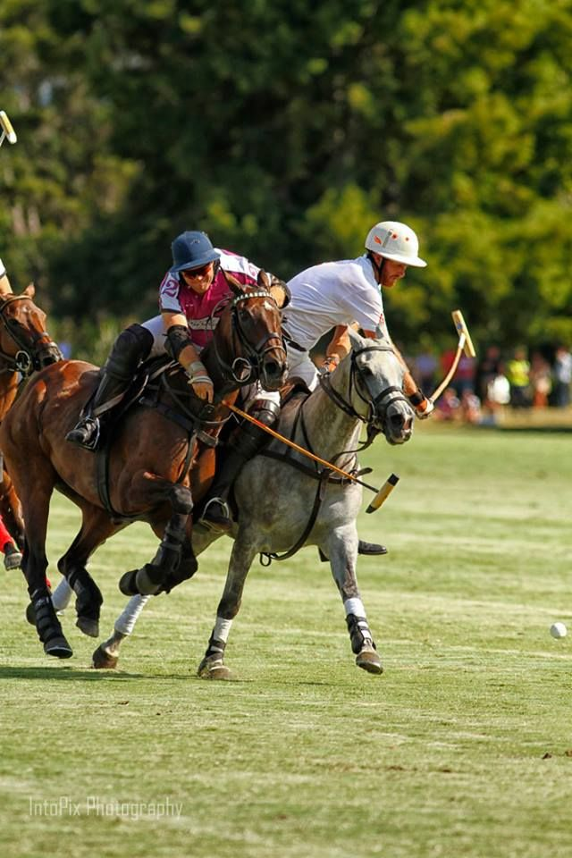 More action from the polo players
