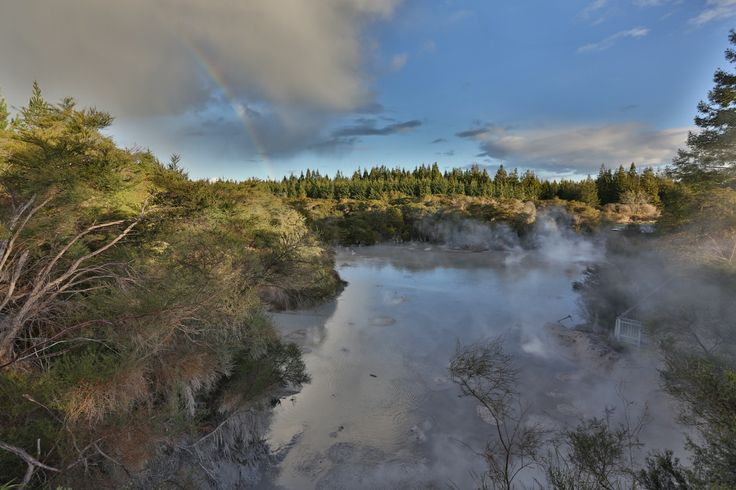 Waiotapu Mud Pools - Rotorua