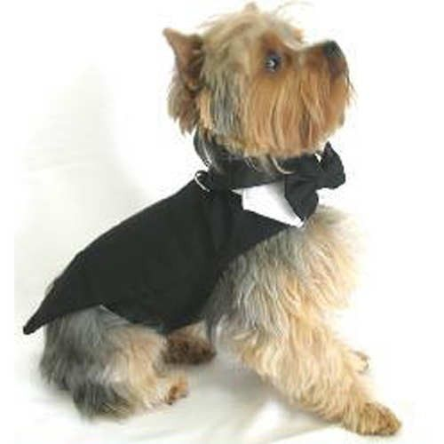 Find this Pin and more on Dogs At Weddings. - Best 20+ Dog Wedding Outfits Ideas On Pinterest Dog Wedding, Boy