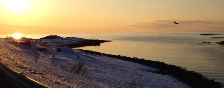 Amazing Winter - Amazing Andøy