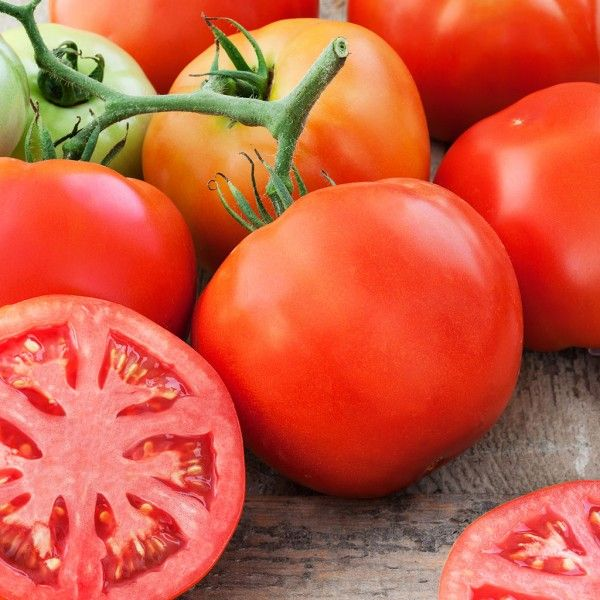 136 Best Images About Tomato Plant Varieties On Pinterest 400 x 300