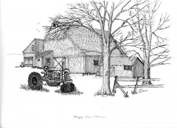 Line drawing of barn maple tree farm drawing by jack brauer maple tree farm · pencil drawingstree drawingspencil sketchingpencil