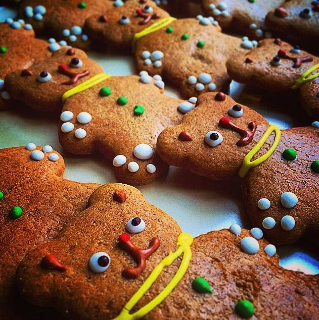 Holiday Season's treat - Gingerbread Teddy Bears by Louis Simard, executive chef at Fairmont Château Laurier