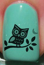 Startled owl Nail Decals by YRNails: Amazon.co.uk: Beauty