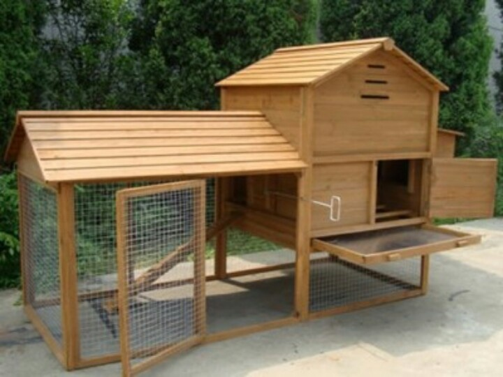 Chicken houses house and chicken on pinterest for Chicken coop size for 6 chickens