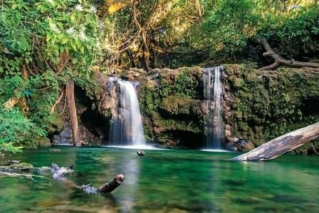Enjoy Safari without having permit in Jim Corbett Park – Jim Corbett National Park Blog