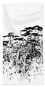 A Field Of Wild Cow Parsnip  Beach Towel by Sandra Foster