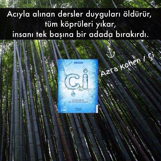 Acıyla alınan dersler duyguları öldürür, tüm köprüleri yıkar, insanı tek başına bir adada bırakırdı. - Akilah Azra Kohen / Çi