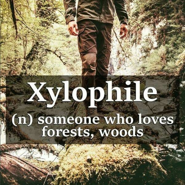 Woods Quotes: ~Xylophile~ Someone Who Loves Forests, Woods