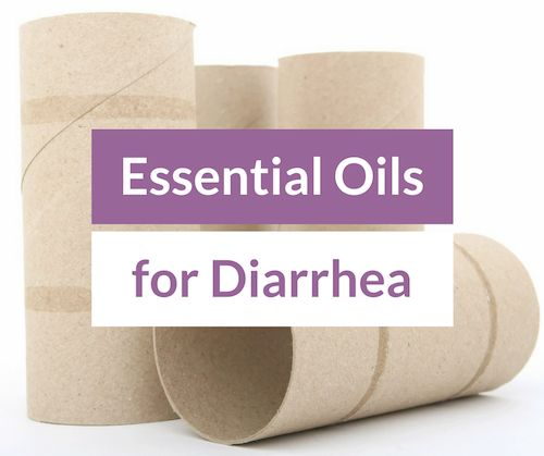 Learn about effective essential oils for diarrhea and stomach cramps caused by irritable bowel and other digestive issues, and how to use such EOs in blends to help stop these digestive issues.