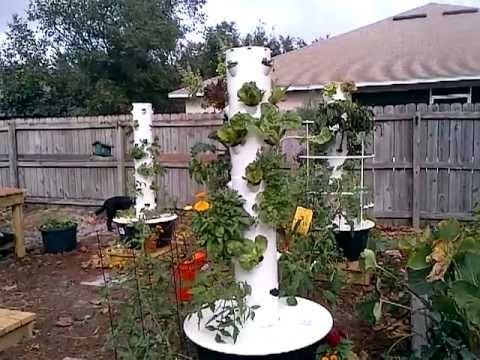 DON'T do this in your Tower Garden! My BIG mistake - YouTube
