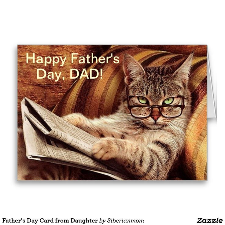 grumpy cat wedding invitations%0A Father u    s Day Card from Daughter