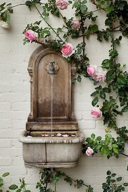 White walls, pale pink rose, aged stone water feature - beautiful.