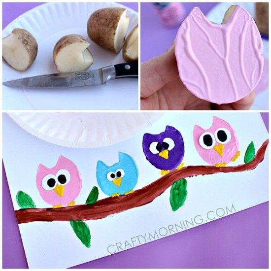Owl Potatoes Vegetable Stamping