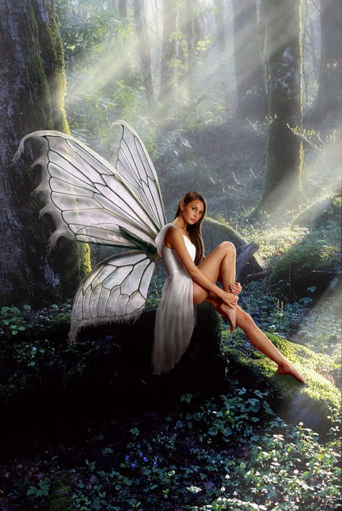 ✯ Sitting Pixie .. By John Hacht✯ -- [REPINNED by All Creatures Gift Shop] BEAUTIFUL!!!