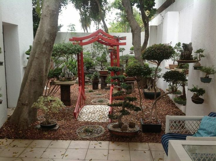 17 Best Images About Back Yard Bonsai Garden On Pinterest